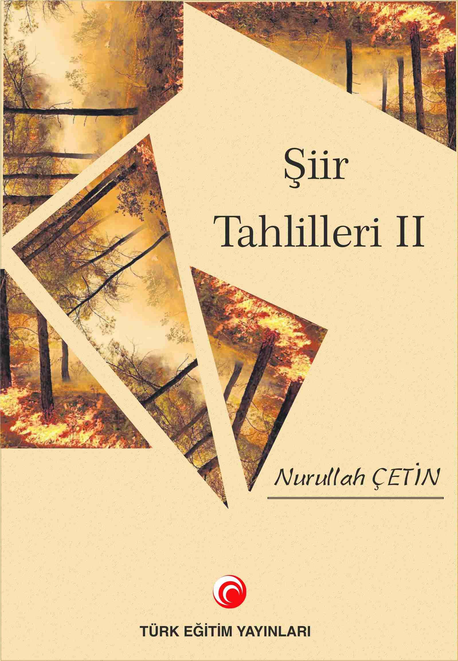 Şiir Tahlilleri-2